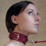 Halsband zur Versklavung und Unterwerfung: Das Basic + Leine