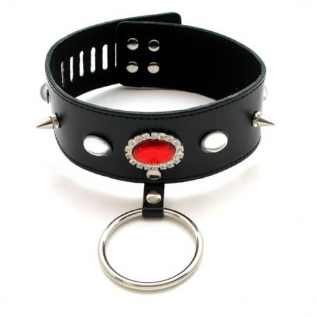 Leder Halsband mit roten elliptoid, Hechte und Ring